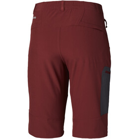 Columbia Triple Canyon Short Homme, tapestry/shark